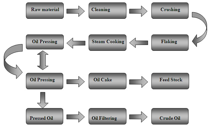 Oil Pressing Line For All Kinds Of Oil Seeds
