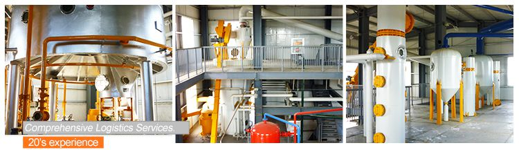 Large Groundnut Oil Extraction Plant