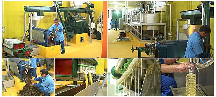 Linseed / Flaxseed Oil Hot Pressing Line Price