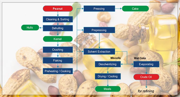Peanut Oil Production Process