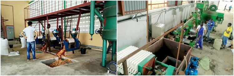 Small Cotton Seed  Oil Processing Plant