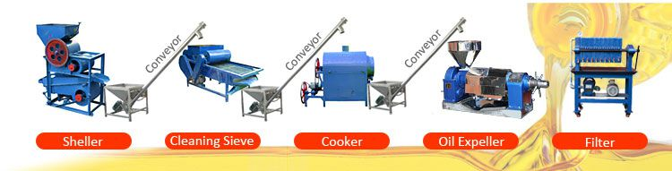 Set Up Edible Oil Plant in Pakistan- Great Market Potential